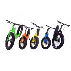 Produkte Sport Roller GreenBoard Einzelhändler