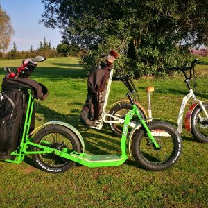greenboard sport roller golf edition 2017