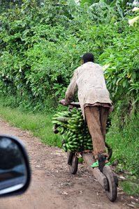 chukudu monopattino utilizzato nella Repubblica Democratica del Congo