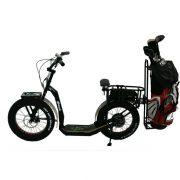 monopattino greenboard eYf 20 500 Platinum special edition Golf
