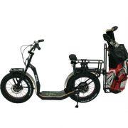 eYf 20 750 Integra Golf